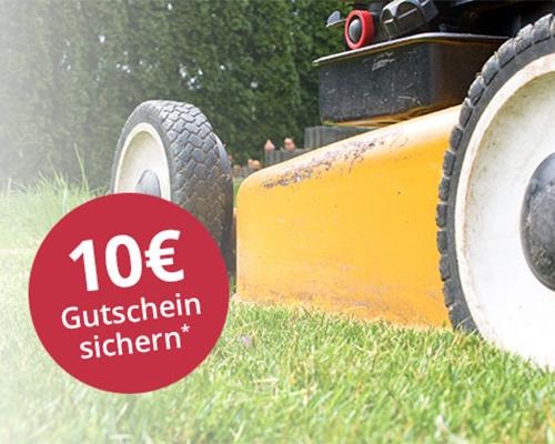 10 € Gutschein sichern mit dem Greenbase Newsletter