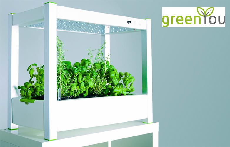 greenyou und greenbase